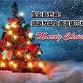 beautiful_christmas_tree.png