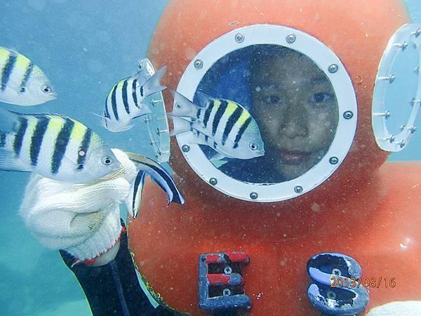 海底漫步7