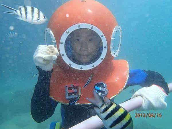海底漫步11