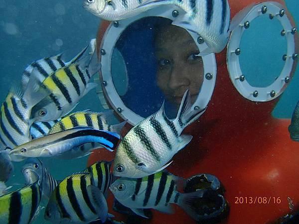 海底漫步17