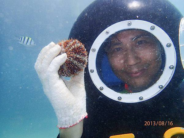 海底漫步32