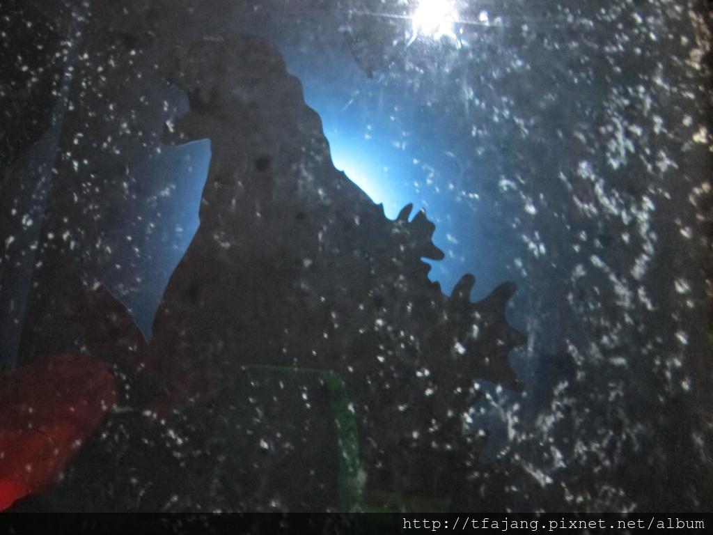 怪獸之王哥吉拉特展Godzilla (43).JPG