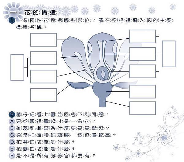 3月開花授粉學習單02.jpg