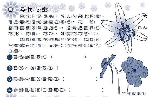 3月開花授粉學習單05
