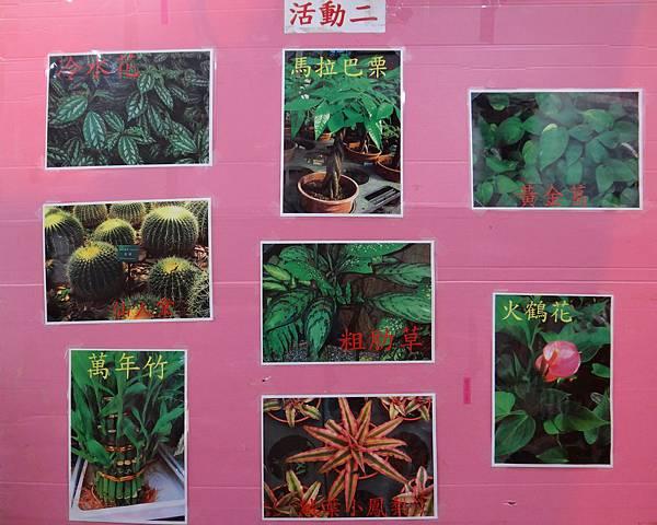 植物園活動二.jpg