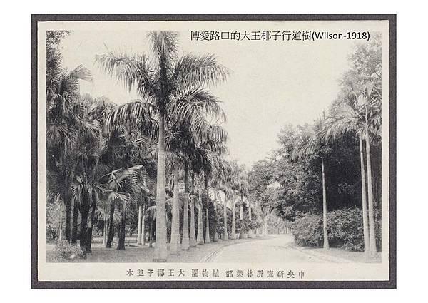 20161228-植物園老照片行前導覽資料.-to 老師們_頁面_44-1.jpg