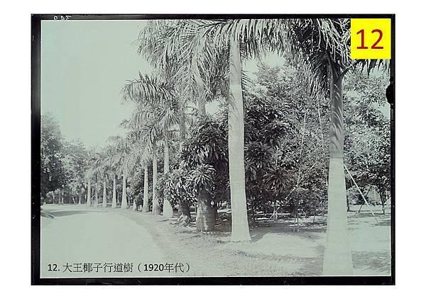 20161228-植物園老照片行前導覽資料.-to 老師們_頁面_44-2.jpg