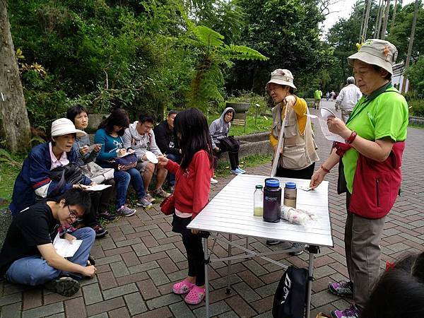 食物森林1061105_171218_0029.jpg