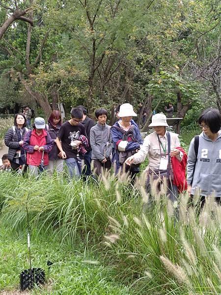 食物森林1061105_171218_0030.jpg