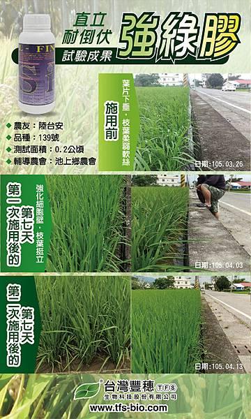 1050415_稻米宣傳海報.jpg