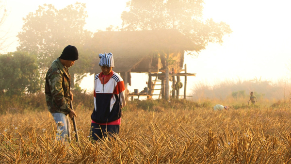 Agrarian Utopia 004.jpg