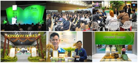 泰國米會議3
