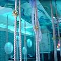 魚窩- 好漂亮的裝飾