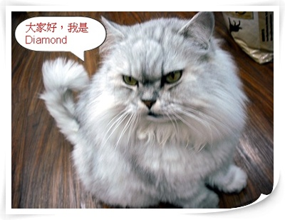 我是Diamond