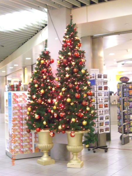 機場內到處是耶誕樹.JPG