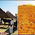 埃及觀光警察