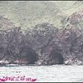 賞鯨1 (15).JPG