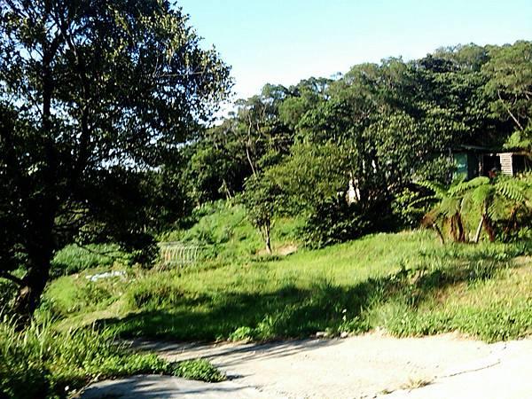 C360_2011-08-02 16-33-19.jpg