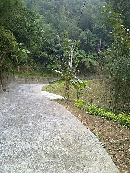 20111127684.jpg