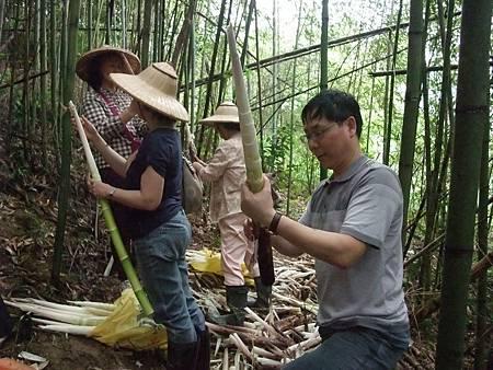 最佳的山林體驗——採竹筍