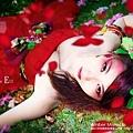玫瑰精靈3