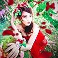 玫瑰精靈1