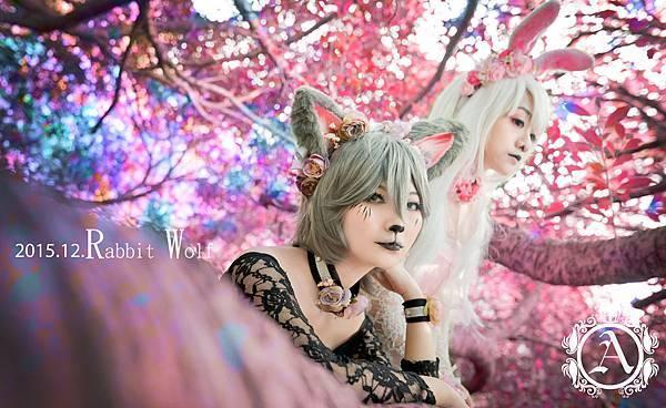 白兔與狼4.jpg