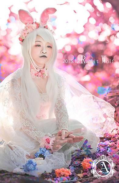 白兔與狼3.jpg