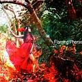 火焰鳳凰3.jpg