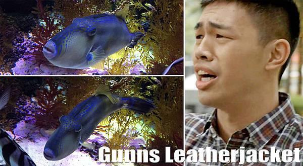 Gunns Leatherjacket.jpg
