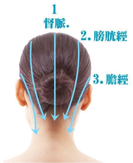 頭部筋絡圖