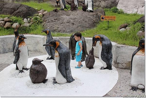 終於快到企鵝館了