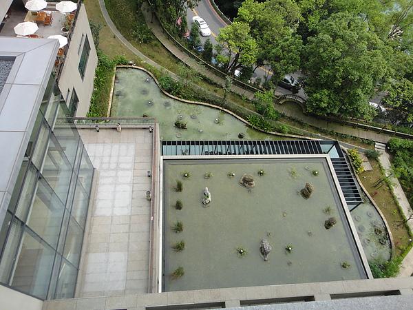 樓下的水池造景