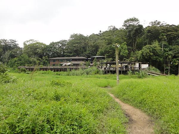 頭社紅木農莊活盆地