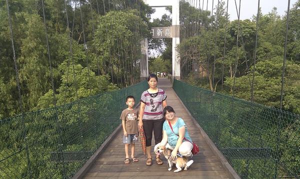 明德水庫的日新島