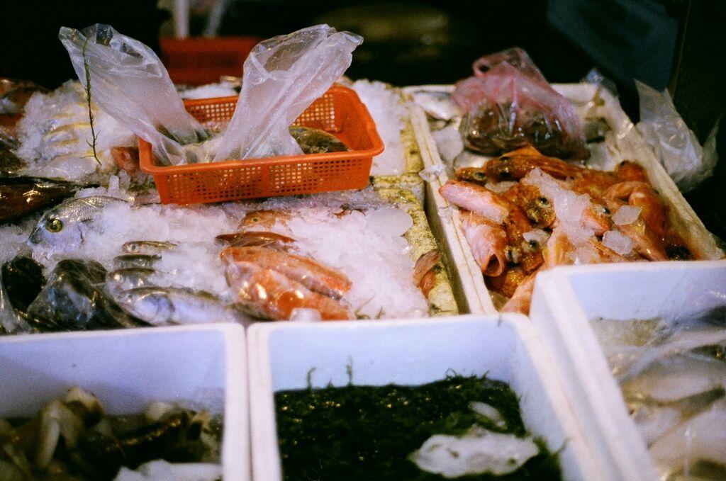 魚,新鮮的魚