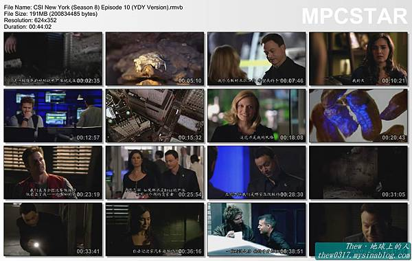 CSI New York (Season 8) Episode 10 (YDY Version)_20120110-18054976.jpg