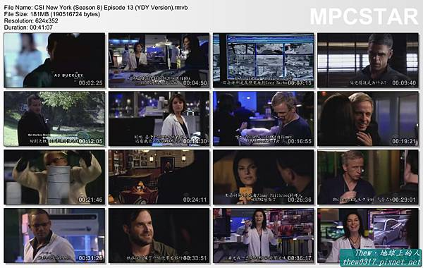 CSI New York (Season 8) Episode 13 (YDY Version)_20120213-21193187.jpg