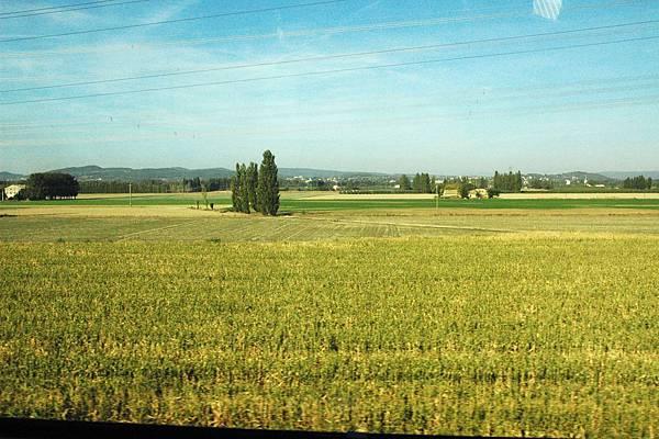 TGV沿途的景色-一望無際的小麥田