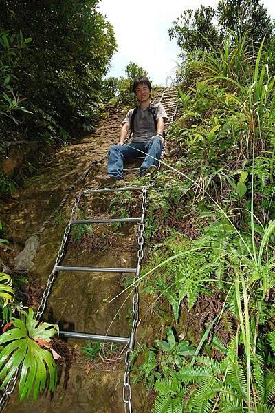 山上很多陡梯