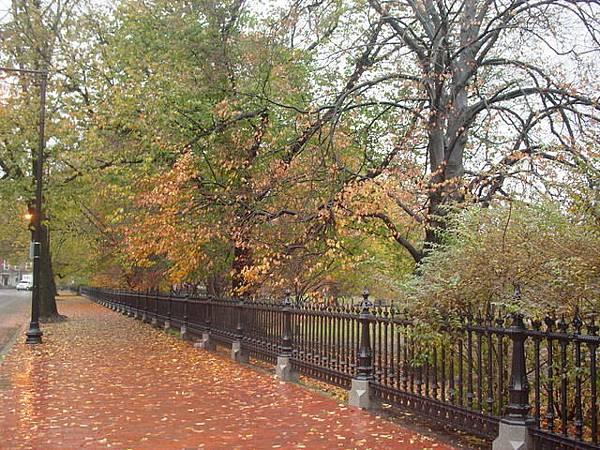 Public Garden街景