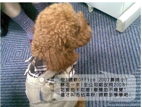 20081201111_r2_c1.jpg