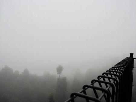 霧濛濛,什麼景色都看不到了