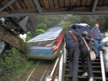 列車要開回去了,接著導遊帶領我們去Walkway走走