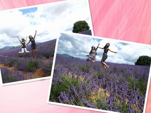 2011_0109_133019.jpg