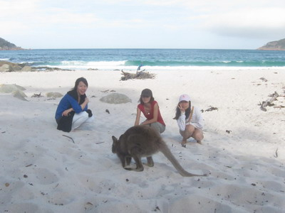 2011_0107_172826發現wallaby.JPG