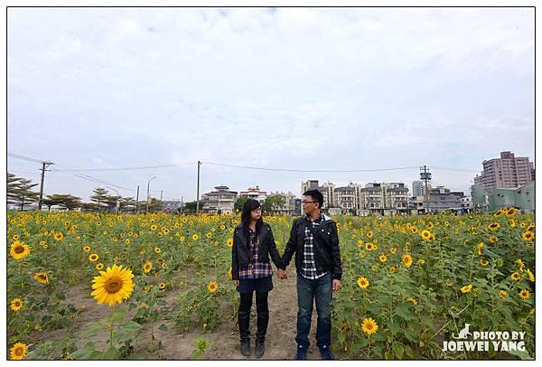 20131121【花田喜事風情橋頭】