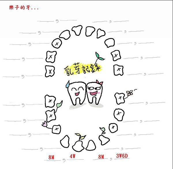 樂子乳牙表.jpg