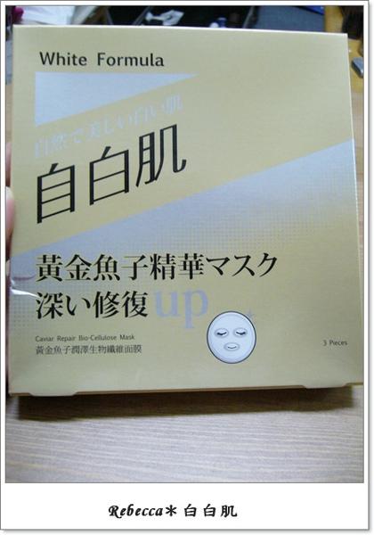 P1080479.jpg