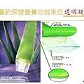 蘆薈透明凝膠